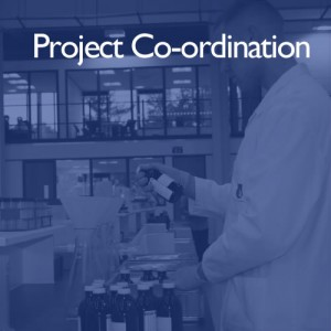 Project Services from i2 Analytical