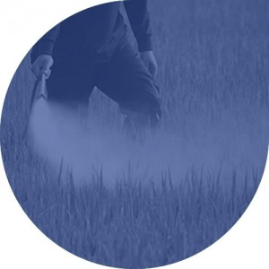 Pesticide services at i2 analytical